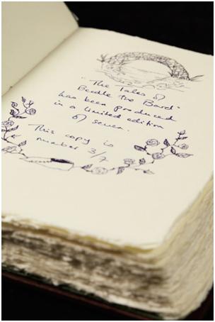 harry-portal-book-writing
