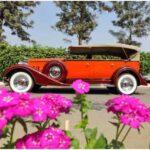 vintage-car-show