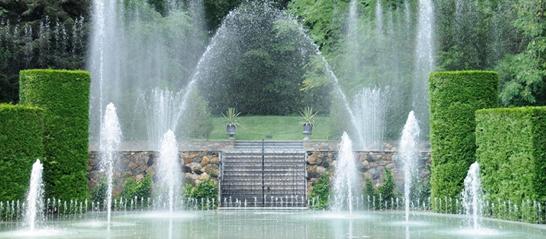 ornamental-water