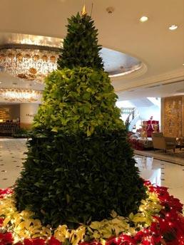 India – Special Christmas tree and treats at Shangri-La's Eros Hotel, New Delhi