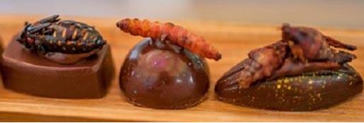 bugs-restaurant