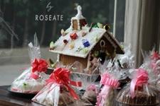 India – Christmas and New Year plans at Taj Palace, Oberoi, Roseate House, The Lodi, Sheraton Grand